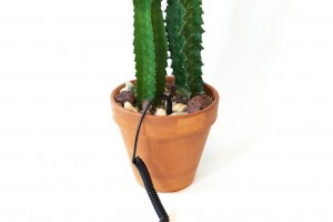 http://lindsaymrobbins.com/files/gimgs/th-45_cactus6_small_v3.jpg